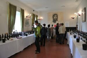 La Grande Festa Winesurf